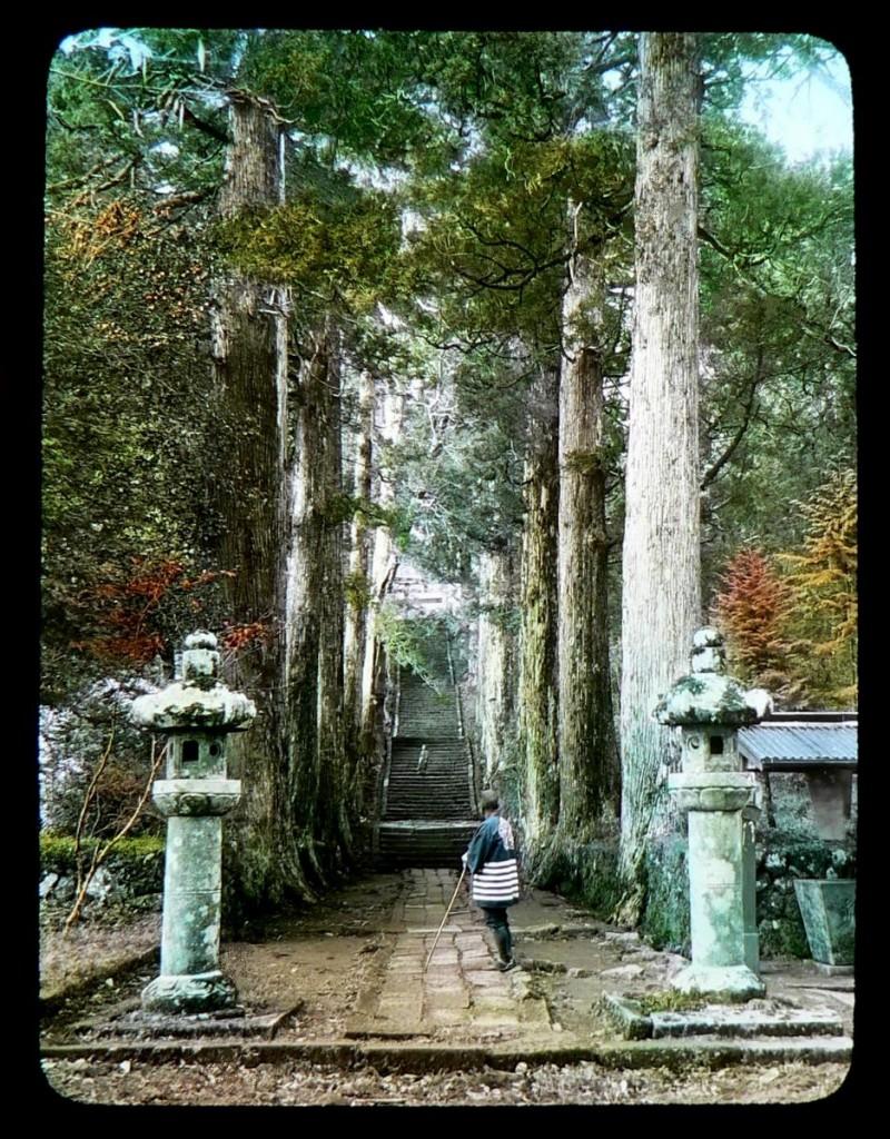 Camino de ascenso hacia el santuario de Gongen en Hakone. T. Enami, ca.1897-1900.