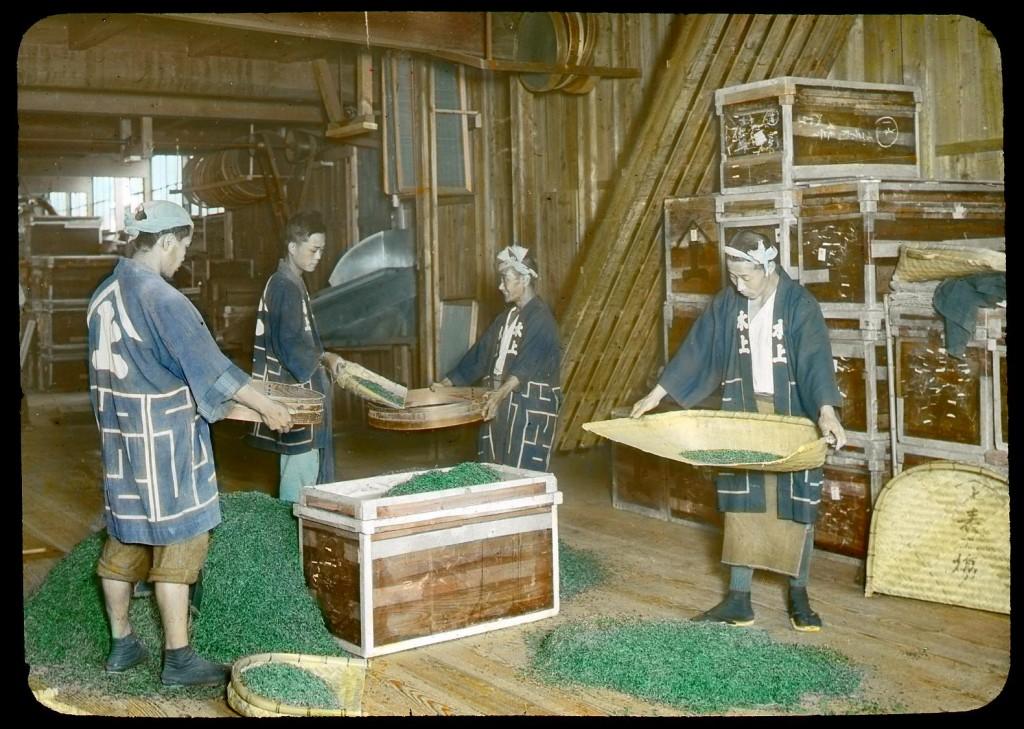 Tamizado de té verde secado, Enami Studio, n.º 593.