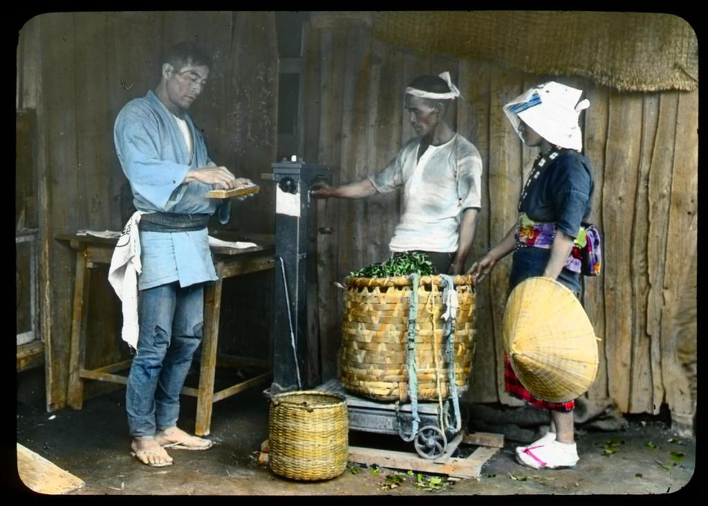Recolector pesando hojas de té, Enami Studio, n.º 588.