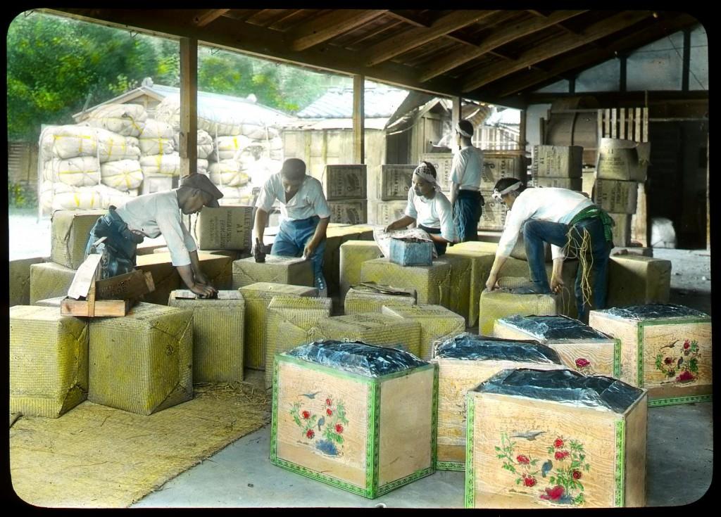 Embalaje del té secado para su transporte, Enami Studio, n.º 615.