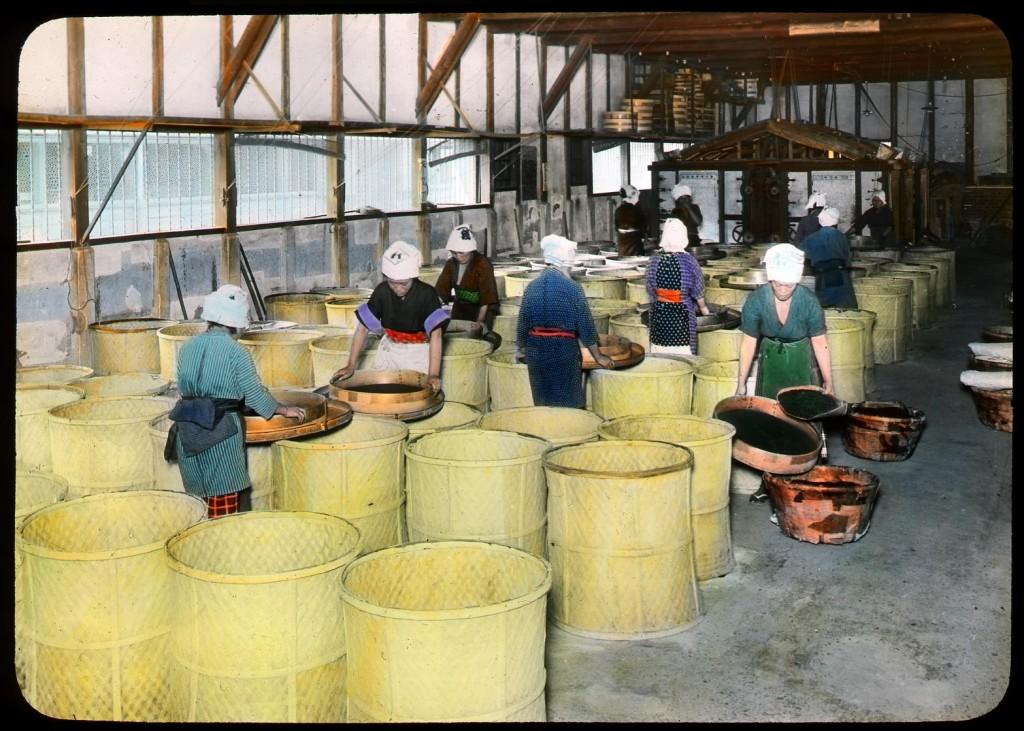 Clasificación de té verde, Enami Studio, n.º 595.