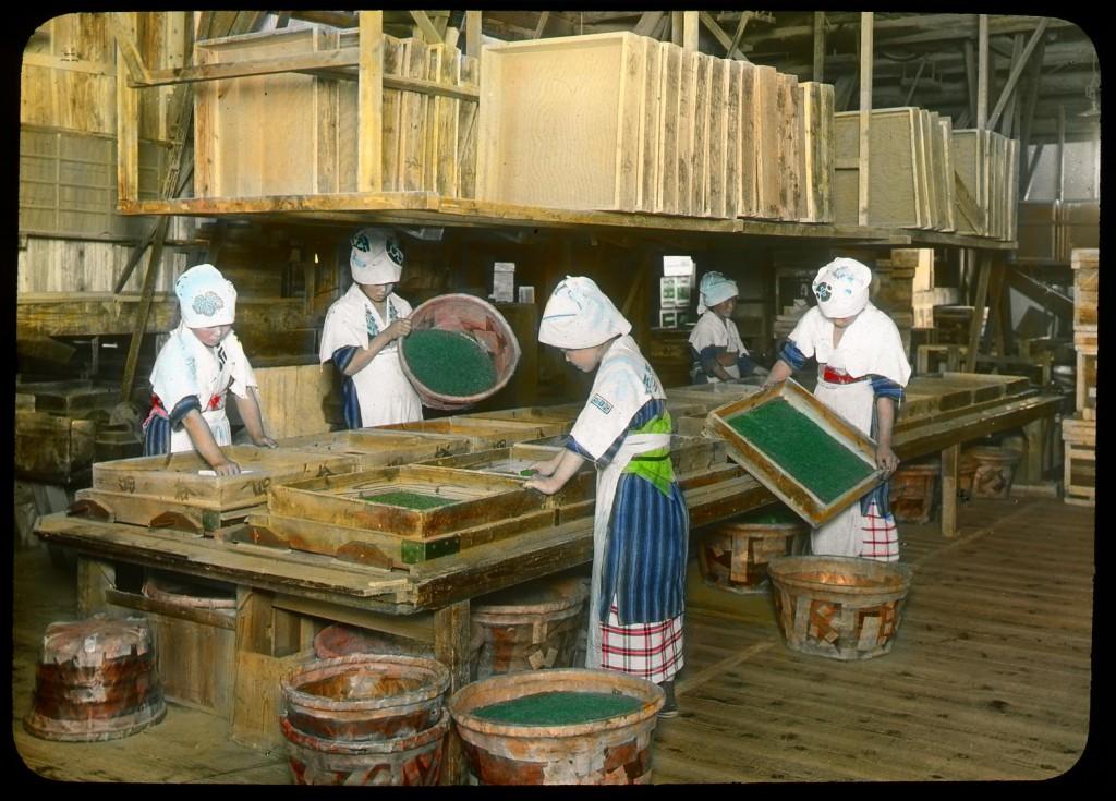 Secado del té verde, Enami Studio, n.º 601.